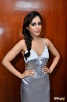 Priya Banerjee at Social Web Series Press Meet (23)