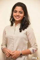 Meda Meeda Abbayi Heroine Nikila Vimal  Interview Photos (15)