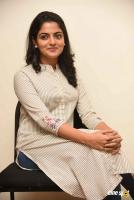 Meda Meeda Abbayi Heroine Nikila Vimal  Interview Photos (16)