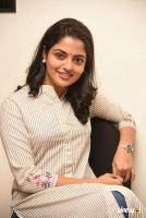 Meda Meeda Abbayi Heroine Nikila Vimal  Interview Photos (18)