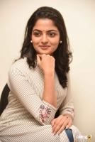 Meda Meeda Abbayi Heroine Nikila Vimal  Interview Photos (20)