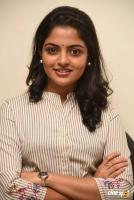 Meda Meeda Abbayi Heroine Nikila Vimal  Interview Photos (23)