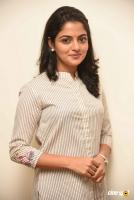 Meda Meeda Abbayi Heroine Nikila Vimal  Interview Photos (6)