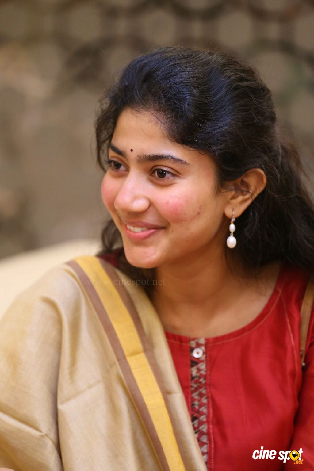 Sai Pallavi at Fidaa 50 Days Celebrations (10)