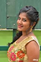 Swetha Reddy Tamil Actress Photos