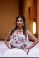 Srinda Ashab at Sherlock Toms Audio Launch (3)