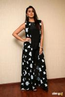 Nikki Galrani at Hara Hara Mahadevaki Press Meet (11)