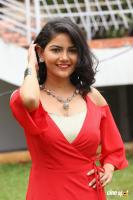 Nandini at Prabhas Movie Opening (49)