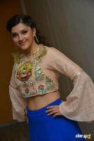 Mehreen Pirzada at Raja The Great Theatrical Trailer Launch (19)