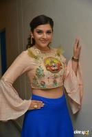 Mehreen Pirzada at Raja The Great Theatrical Trailer Launch (22)