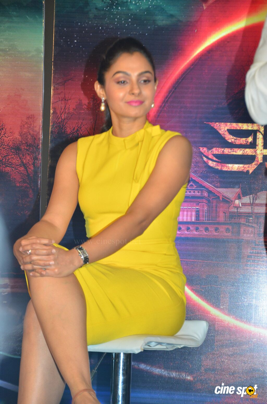 Aval Movie Trailer Launch (21)