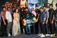Devi Sri Prasad Movie Audio Launch (10)