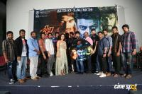 Devi Sri Prasad Movie Audio Launch (11)
