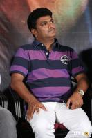 Devi Sri Prasad Movie Audio Launch (25)