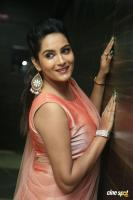 Himaja at Vunnadhi Okate Zindagi Audio Launch (17)