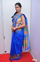 Pooja at Kala Silk Handloom Expo Launch (11)