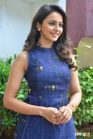 Rakul Preet Singh at Theeran Adhigaram Ondru Press Meet (9)