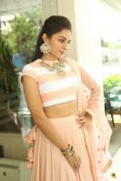 Andrea Jeremiah at Detective Movie Press Meet (10)