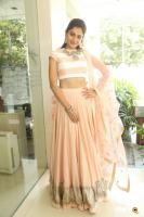 Andrea Jeremiah at Detective Movie Press Meet (14)