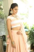 Andrea Jeremiah at Detective Movie Press Meet (16)