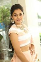 Andrea Jeremiah at Detective Movie Press Meet (8)