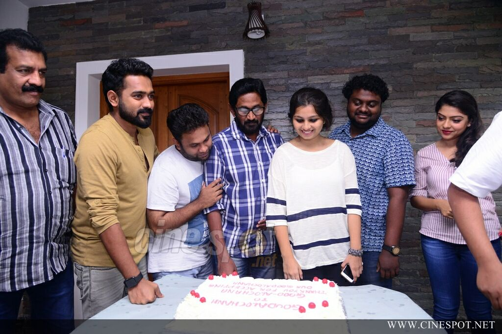 Goodalochana Movie Success Meet (19)
