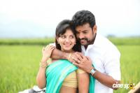 Alludu Singam New Photos (6)