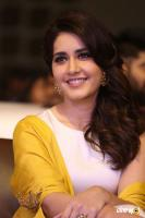Raashi Khanna at Balakrishnudu Audio Launch (14)