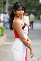 Amala Paul at Dongodochadu Teaser Launch (35)