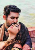 Indrasena Movie New Photos (2)