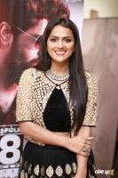 Shraddha Srinath at Richie Movie Audio Launch (11)