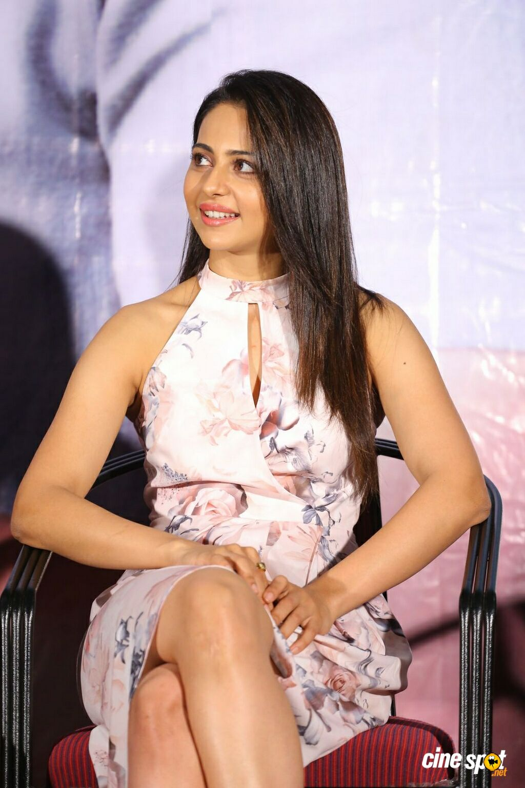 Khakee Movie Success Meet (25)