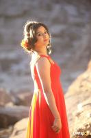 Kannullo Nee Roopame New Photos (4)