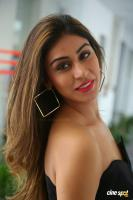 Myra Sareen Actress Photos