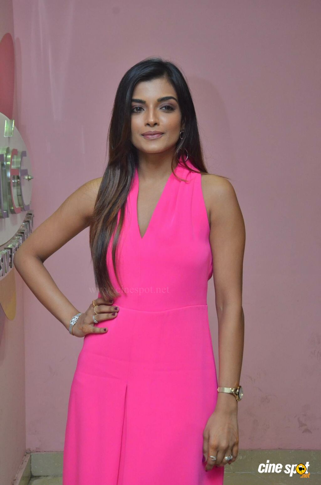 Ashna Zaveri at Brahma.com Audio Launch (3)
