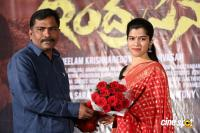 Indrasena Movie Success Meet (7)