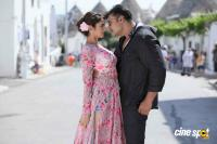 Tarak Kannada Movie Photos