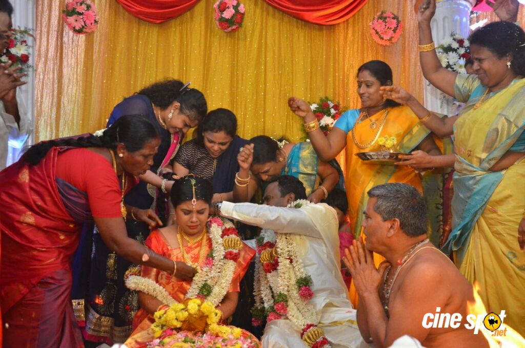 Producer M Ramanathan Daughter Marriage (37)