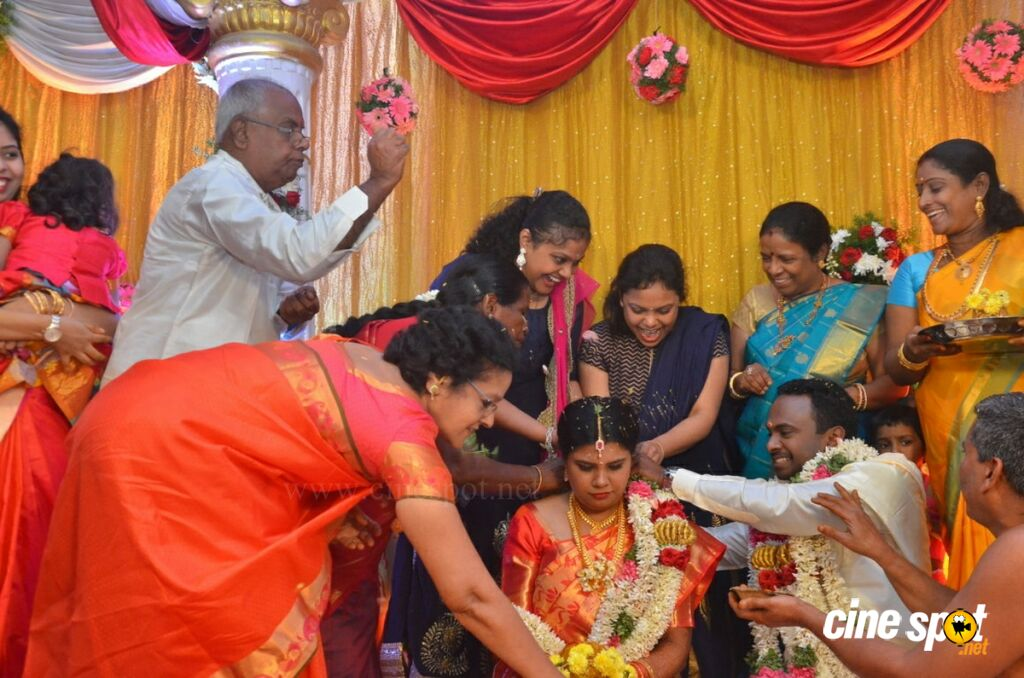 Producer M Ramanathan Daughter Marriage (38)