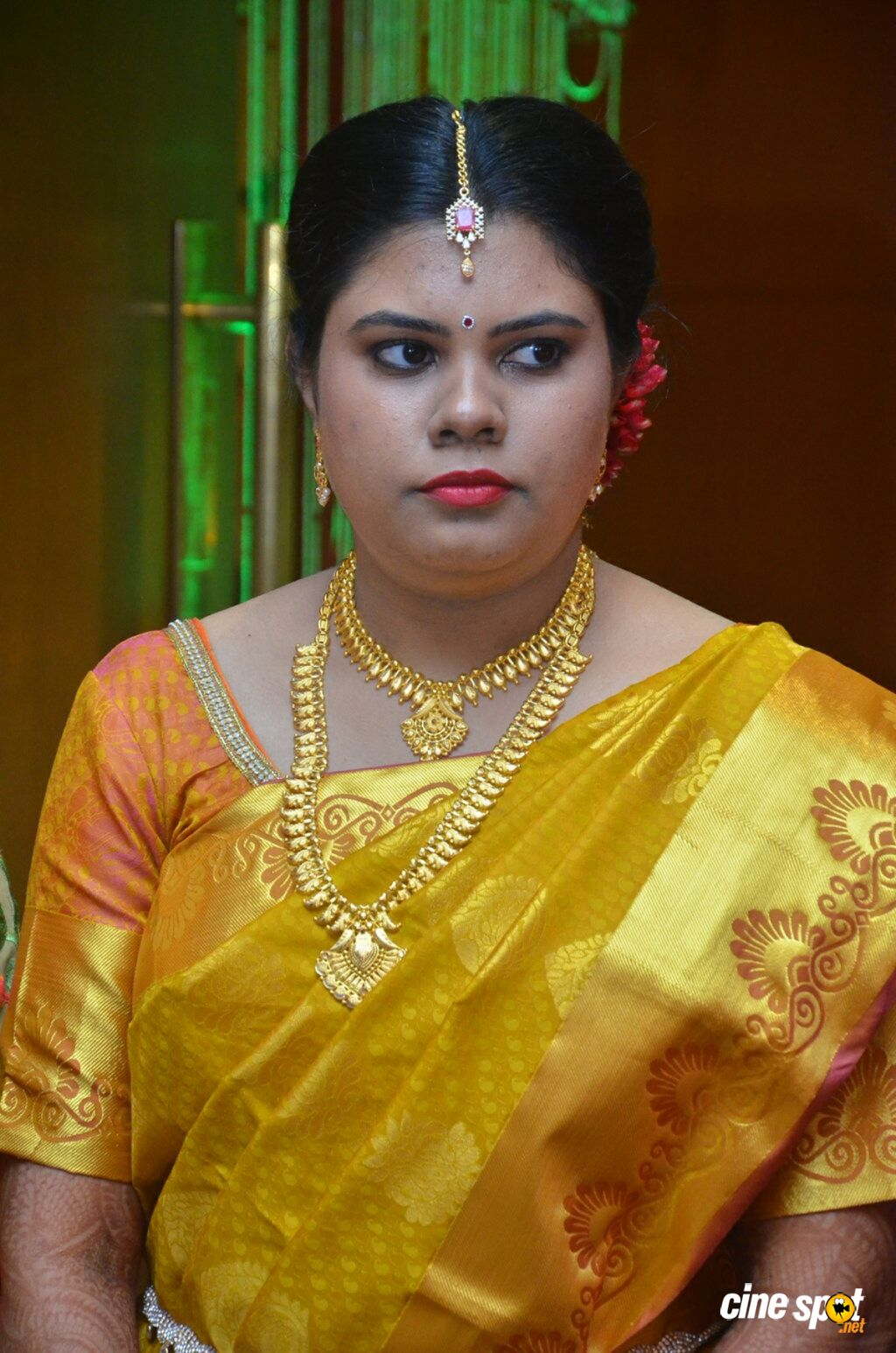 Producer M Ramanathan Daughter Marriage (8)