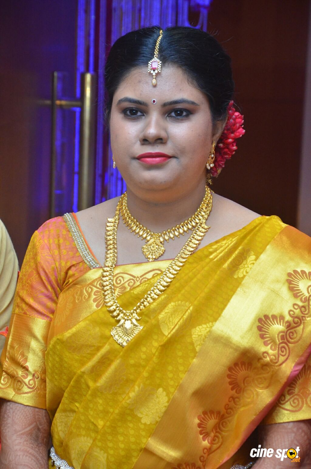 Producer M Ramanathan Daughter Marriage (9)