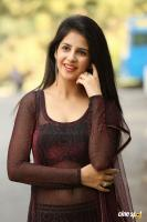 Kashish Vohra at Saptagiri LLB Success Meet (41)