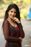 Kashish Vohra at Saptagiri LLB Success Meet (42)