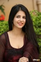 Kashish Vohra at Saptagiri LLB Success Meet (57)