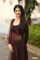 Kashish Vohra at Saptagiri LLB Success Meet (6)