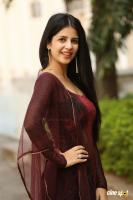 Kashish Vohra at Saptagiri LLB Success Meet (9)