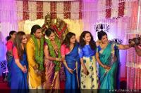 Veena Nair's Brother Wedding Images (4)