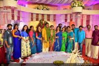 Veena Nair's Brother Wedding Images (42)