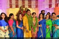 Veena Nair's Brother Wedding Images (43)