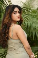 Sony Charishta New Photos (8)